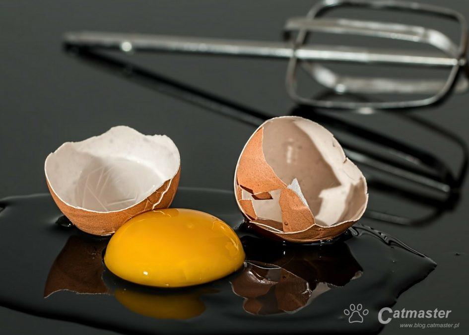 Mity żywieniowe – wieprzowina, kości, jajka